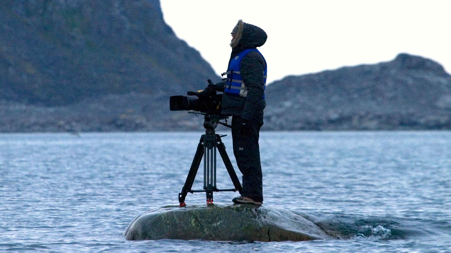 CameraCrew - David Rose Rock Shot